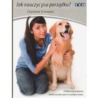 Jak nauczyć psa porządku? (opr. miękka)