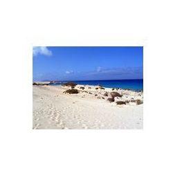 Foto naklejka samoprzylepna 100 x 100 cm - Plaża Fuerteventura