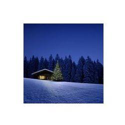 Foto naklejka samoprzylepna 100 x 100 cm - Domek narciarski z choinki