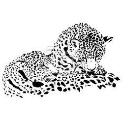 Fototapeta Wielkie koty Jaguar, gepard, lampart, ilustracji wektorowych, samodzielnie