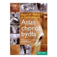 Atlas chorób bydła - Wysyłka od 5,99 - kupuj w sprawdzonych księgarniach !!! (opr. twarda)