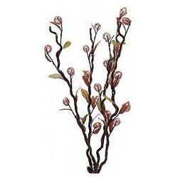 Europalms Flowering branch Melaleuca, LEDs, 120cm, Sztuczna roślina z efektem LED