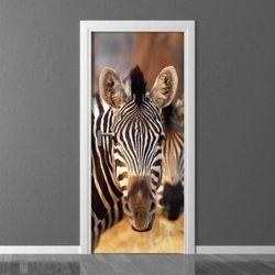 zebra 136 fototapeta na drzwi
