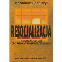 Resocjalizacja Teoretyczne podstawy oraz przykłady programów odziaływań (opr. miękka)