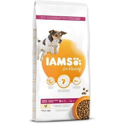 IAMS sucha karma Dog Senior Small&Medium Chicken 12 kg