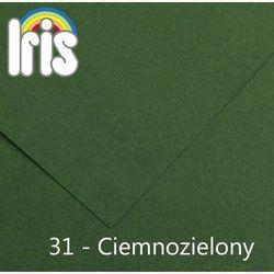 Brystol Canson Iris B1/240g ciemny zielony 25ark.