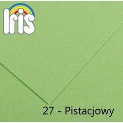 Brystol Canson Iris B1/240g pistacjowy 25ark.