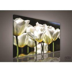 Obraz Białe Tulipany PP585
