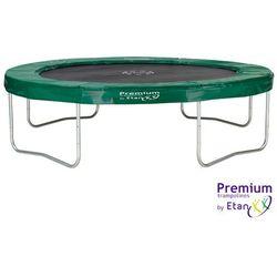 Trampolina ogrodowa Etan Premium Platinum 300 cm