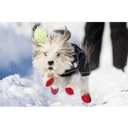 Buty z naturalnej gumy dla psów XS