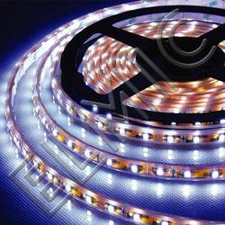 Taśma LED XH 3528 SMD 60 szt./m 4,8W/m 24W DC 12V IP 65 5 mb 3000K Ciepła Biel ELMIC