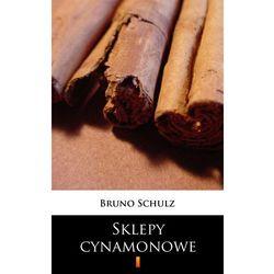 Bruno Schulz: Sklepy cynamonowe e-book, okładka ebook