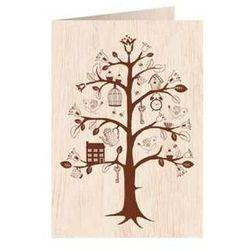 Drzewo Zycia Porównaj Zanim Kupisz