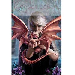 Anne Stokes Dragonkin - plakat