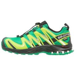 Salomon XA PRO 3D GTX Obuwie do biegania Szlak athletic green/black/granny green
