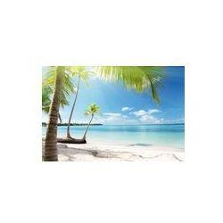 Foto naklejka samoprzylepna 100 x 100 cm - Karaiby morze i palmy kokosowe