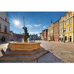fototapeta 04X Poznań, stary rynek 4043