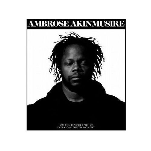 ON THE TENDER SPOT OF EVERY CALLOUSED MOMENT - Ambrose Akinmusire (Płyta CD)