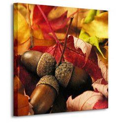 Jesień, żołędzie - Obraz na płótnie