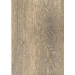 Panele podłogowe laminowane Dąb Bieszczadzki Wild Wood, 8 mm AC5