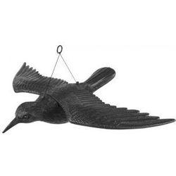 Kruk z rozpostartymi skrzydłami odstraszacz ptaków