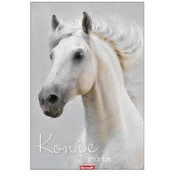 Kalendarz planszowy 2013 Konie (BPZ)