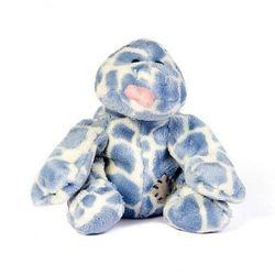 Jaszczurka niebieski nosek