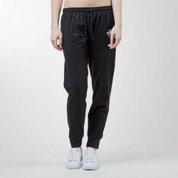 Stussy spodnie dresowe WT Sweatpant black - black