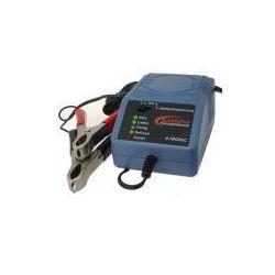 Ładowarka do akumulatorów żelowych 2V / 6V