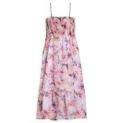 Pampolina Sukienka letnia multicolor