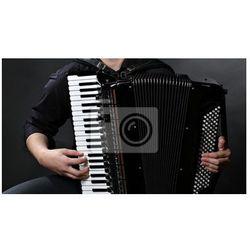 Obraz postrzępione przyciski akordeon