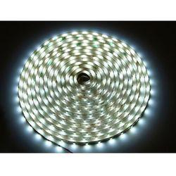 LED line Profesjonalna taśma LED 300 SMD 3528 w powłoce silikonowej IP65 biała neutralna 240256