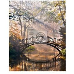 Fototapeta Stary most w parku jesienią misty