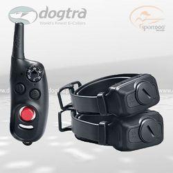 Tresura dwóch psów - obroże elektryczne dla psów iQ CLiQ