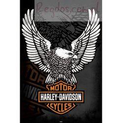 Harley Davidson Orzeł - plakat