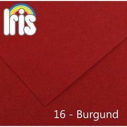 Brystol Canson Iris B1/240g burgundowy 25ark.