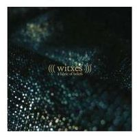 A Fabric Of Beliefs - Witxes (Płyta CD)