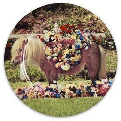 Płytki talerz Pony