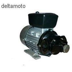 Pompa do oleju diesel, 220V, 120l/min