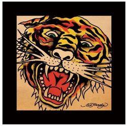 Tygrys - reprodukcja