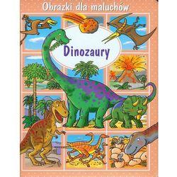 Dinozaury Obrazki dla maluchów (opr. kartonowa)