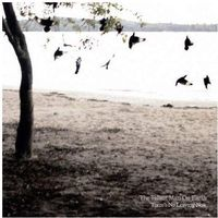 There S No Leaving Now - Tallest Man On Earth The (Płyta CD)